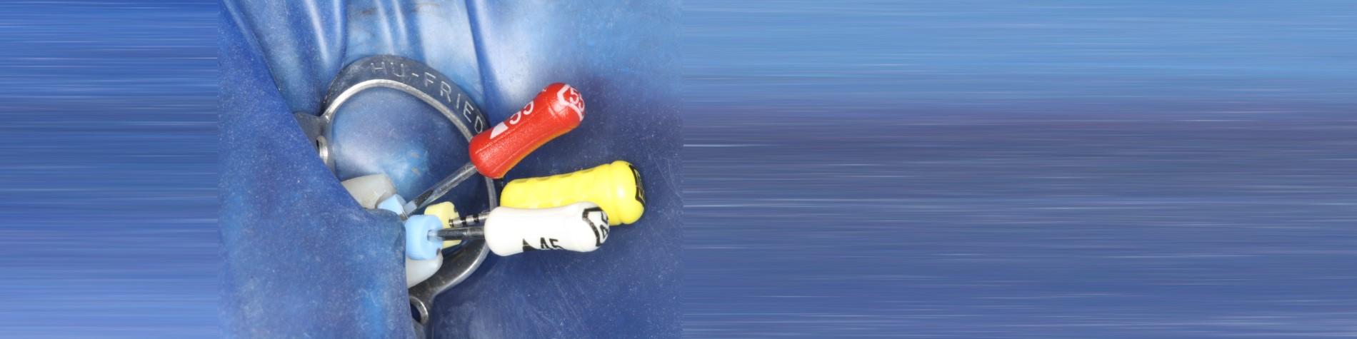 Ein Tag für die Endodontie